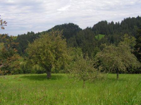 10.08.2014 Gemeindereise Luthern Bad