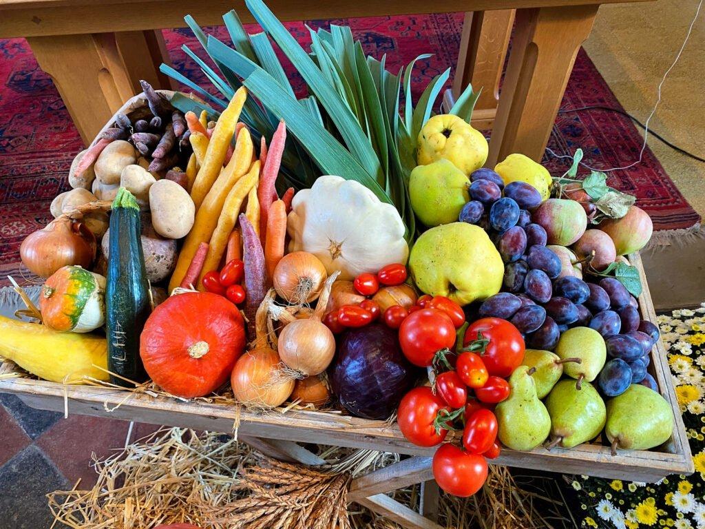 Der Apfel – oder warum es Sinn macht, dass wir als Kirche Erntedank feiern.